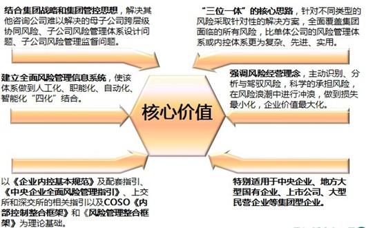 集团类咨询服务 - 集团风险管理咨询